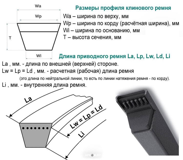 Размеры профиля и длина приводного ремня la lp lw ld li